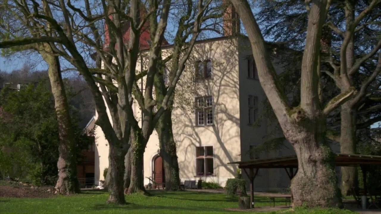 Château de Morey - Reportage - Vosges Télévision